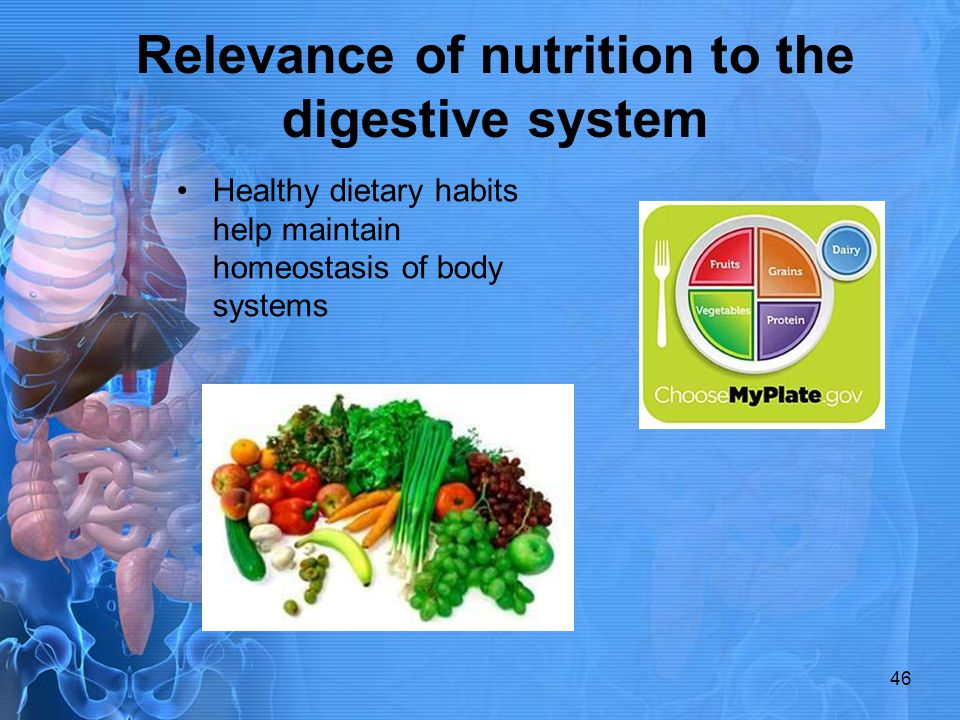 Relevance of nutrition to the digestive system Healthy dietary habits help maintain homeostasis of body systems 46