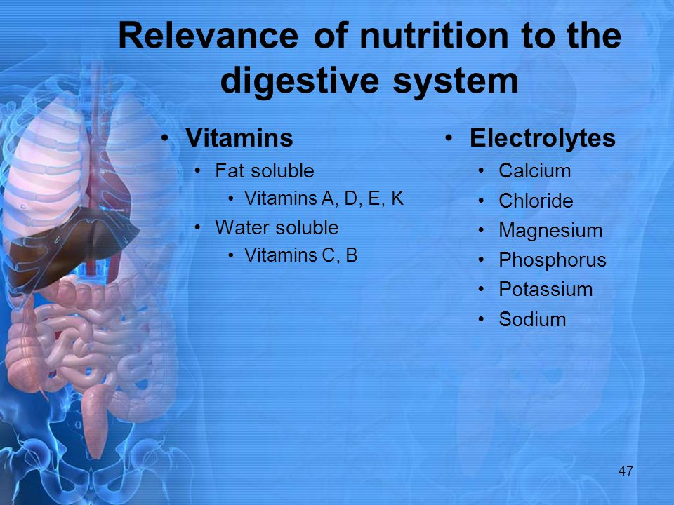 Relevance of nutrition to the digestive system Vitamins Fat soluble Vitamins A, D, E, K Water soluble Vitamins C, B Electrolytes Calcium Chloride Magn