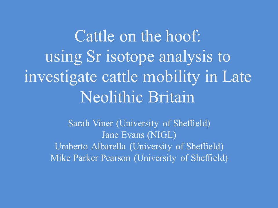 Cattle on the hoof: using Sr isotope analysis to investigate cattle mobility in Late Neolithic Britain Sarah Viner (University of Sheffield) Jane Evans (NIGL) Umberto Albarella (University of Sheffield) Mike Parker Pearson (University of Sheffield)