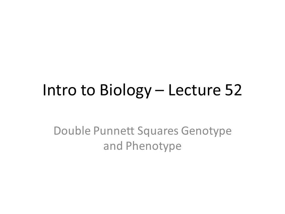 Intro to Biology – Lecture 52 Double Punnett Squares Genotype and Phenotype