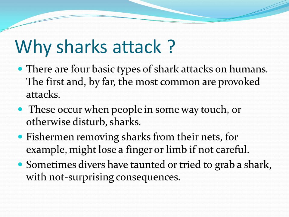 Shark facts 93% of shark attacks from 1580 to 2010 worldwide were on males.
