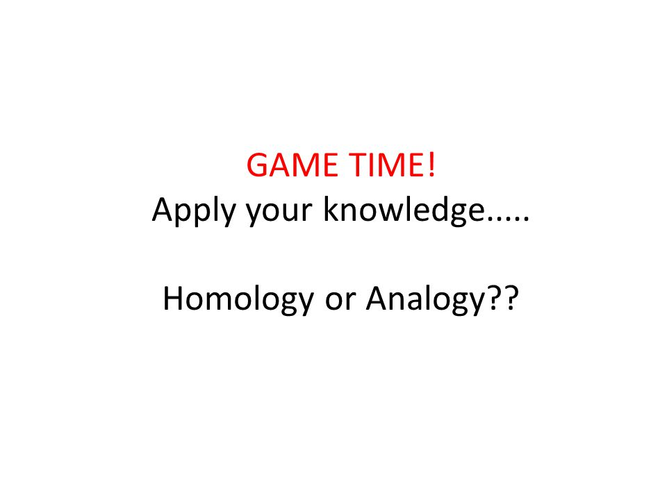 GAME TIME! Apply your knowledge..... Homology or Analogy??