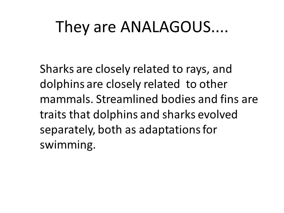 They are ANALAGOUS.... Sharks are closely related to rays, and dolphins are closely related to other mammals. Streamlined bodies and fins are traits t