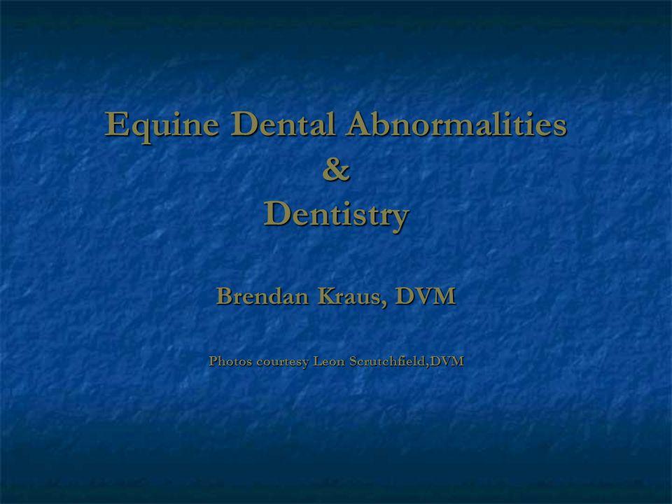 Equine Dental Abnormalities & Dentistry Brendan Kraus, DVM Photos courtesy Leon Scrutchfield,DVM