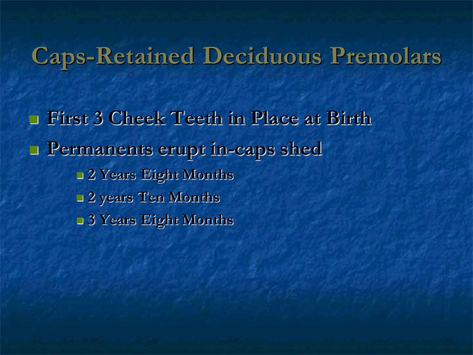 Caps-Retained Deciduous Premolars First 3 Cheek Teeth in Place at Birth First 3 Cheek Teeth in Place at Birth Permanents erupt in-caps shed Permanents