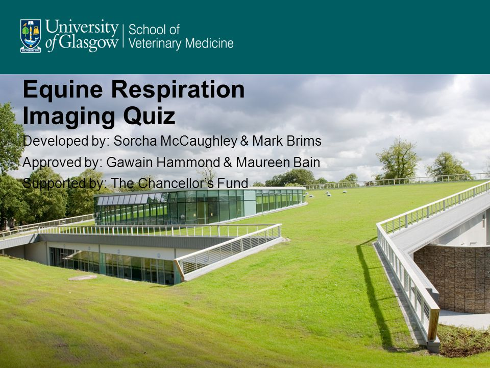 Equine Respiration Imaging Quiz Developed by: Sorcha McCaughley & Mark Brims Approved by: Gawain Hammond & Maureen Bain Supported by: The Chancellors Fund