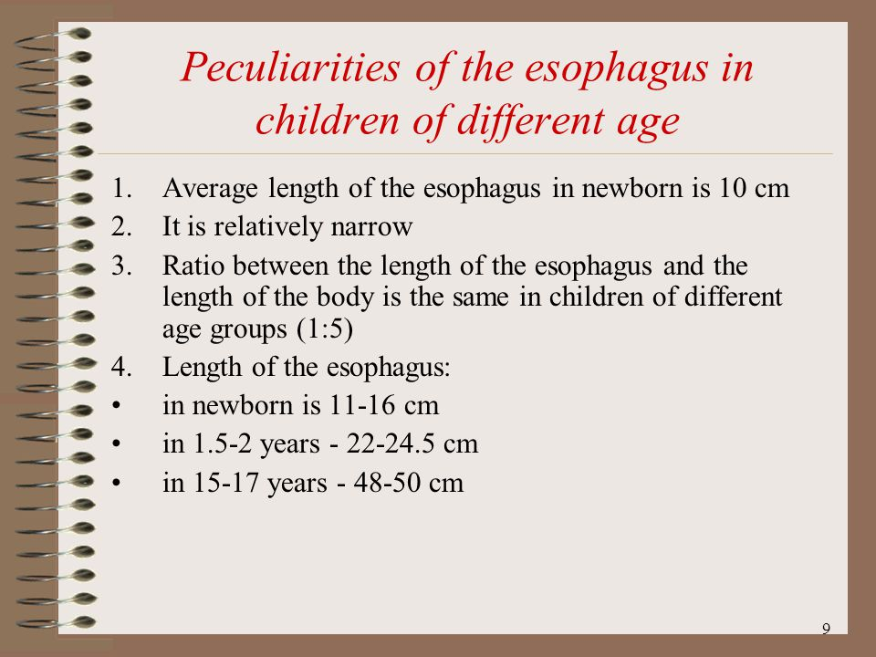 10 The constriction of the esophagus AnatomicalAnatomical 1.Upper constriction - in place of entrance into the esophagus 2.Middle constriction - in place of adjacent the trachea to esophagus 3.Lower constriction - in place of entrance through the diaphragm PhysiologicalPhysiological 1.Upper constriction - at the begining of the esophagus 2.Middle constriction - in place of adjacent the aorta to esophagus 3.Lower constriction - in place of entrance into the cardial part of the stomach.