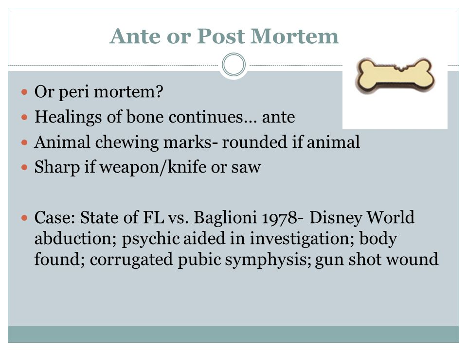 Ante or Post Mortem . Or peri mortem.
