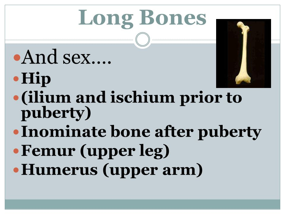 Long Bones And sex….
