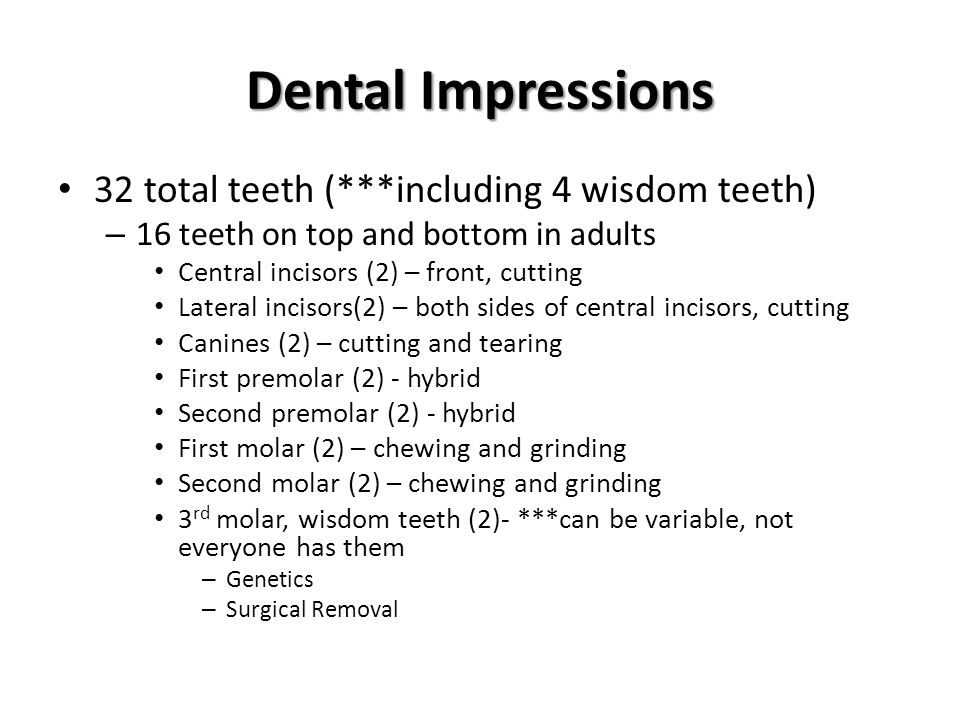 Dental Impressions 32 total teeth (***including 4 wisdom teeth) – 16 teeth on top and bottom in adults Central incisors (2) – front, cutting Lateral i