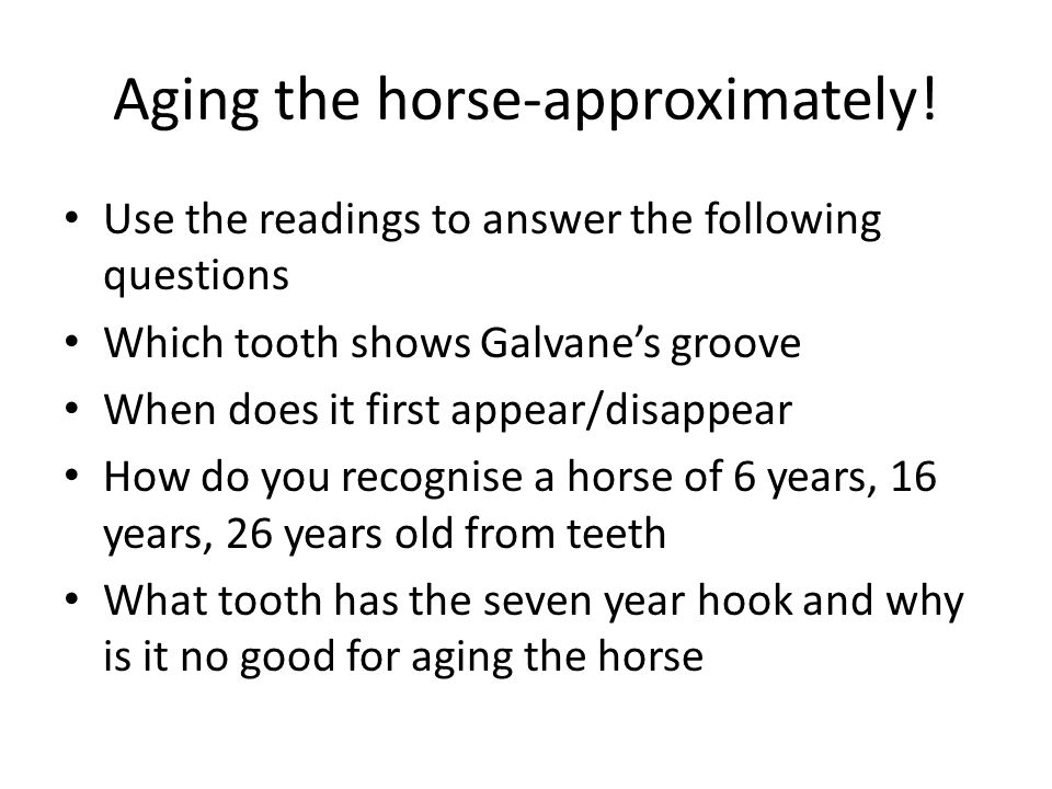 Aging the horse-approximately.