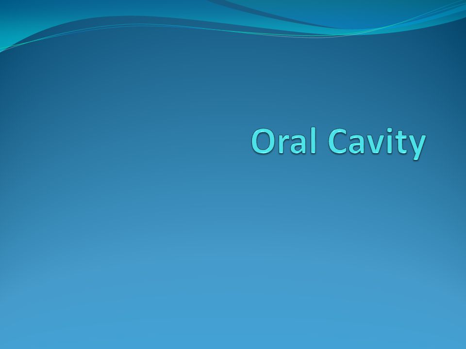 Objectives: Describe the boundaries of the oral cavity.
