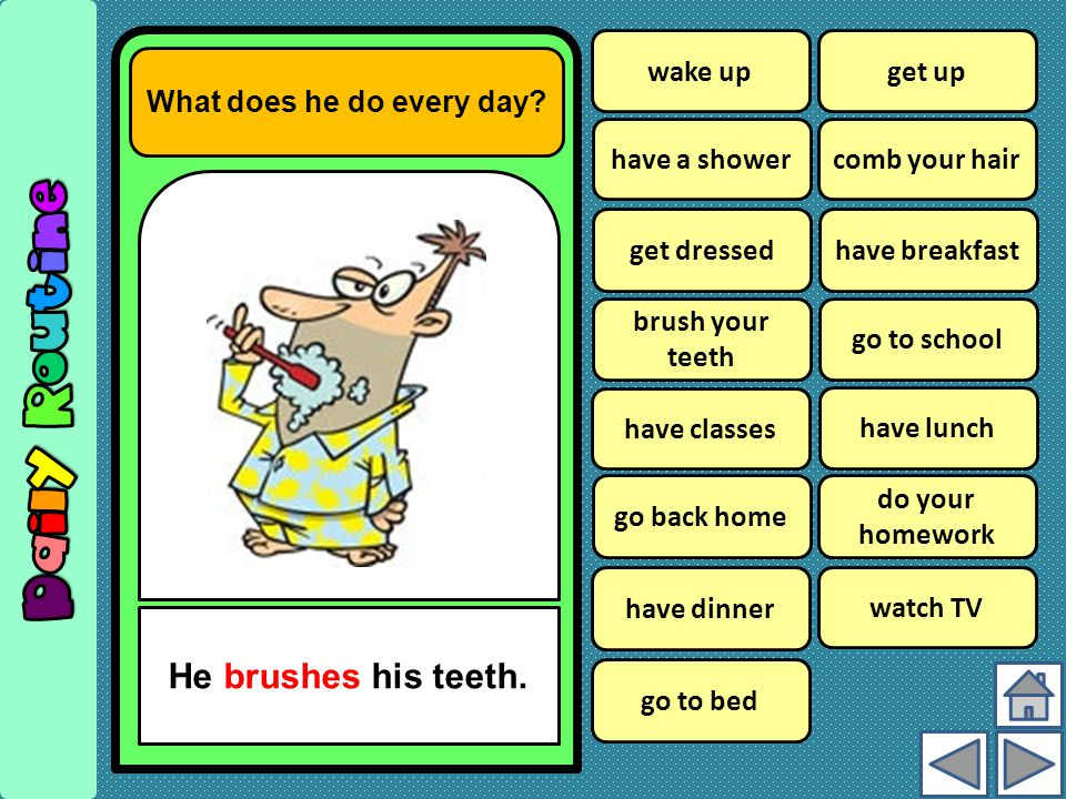 What does he do every day.He brushes his teeth.