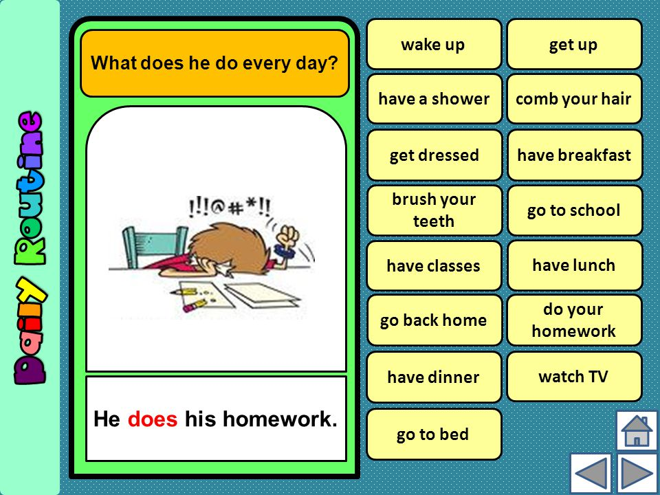 wake up What does he do every day.He does his homework.