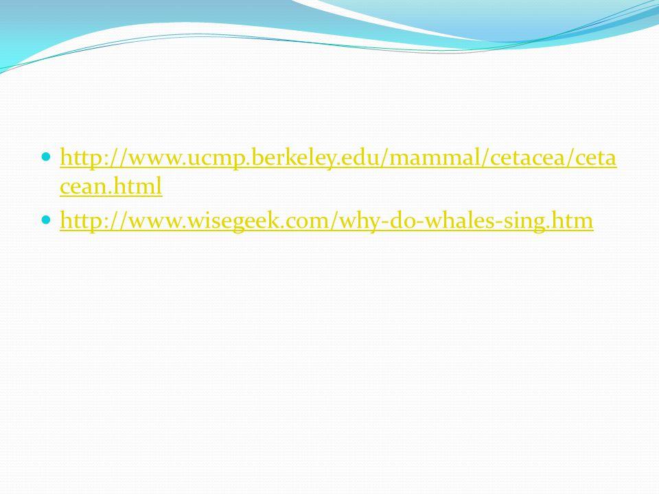 http://www.ucmp.berkeley.edu/mammal/cetacea/ceta cean.html http://www.ucmp.berkeley.edu/mammal/cetacea/ceta cean.html http://www.wisegeek.com/why-do-w