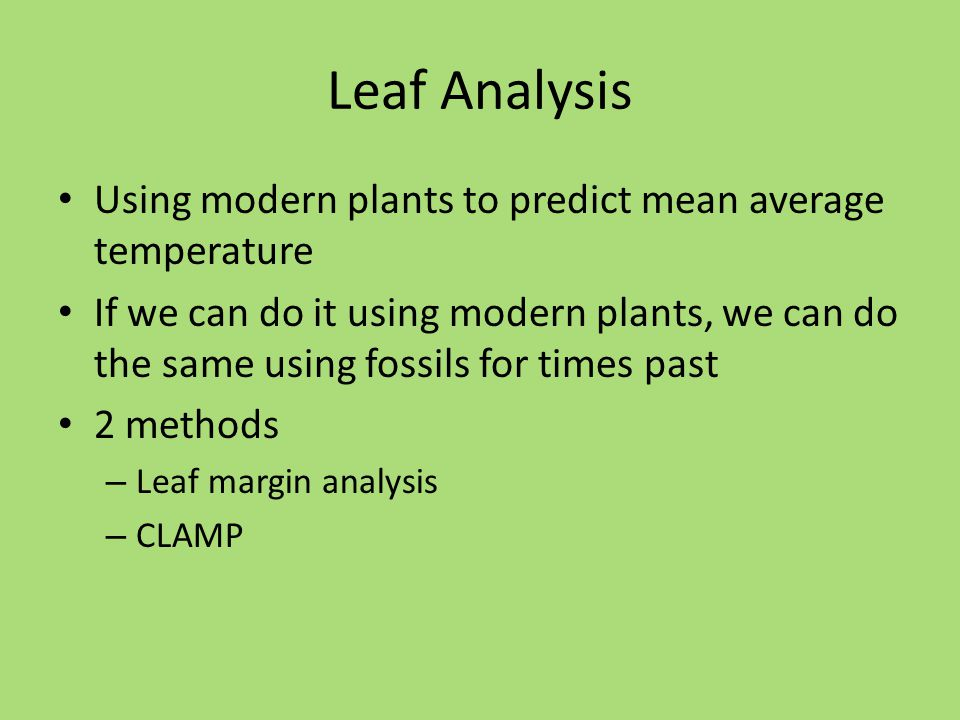 Leaf Analysis Using modern plants to predict mean average temperature If we can do it using modern plants, we can do the same using fossils for times