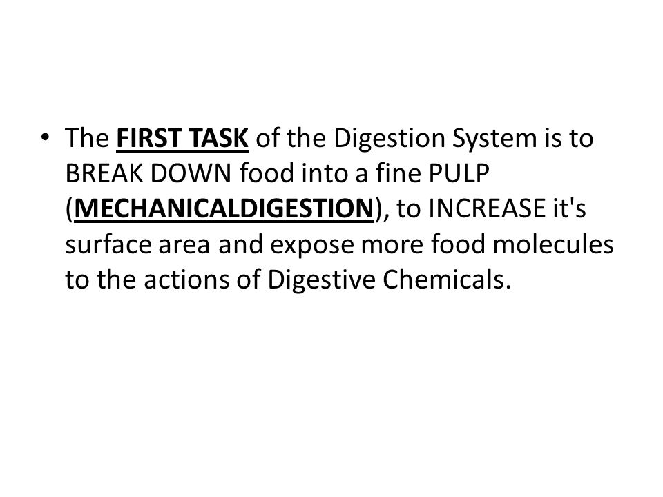 The process of Mechanical Digestion breaks food into tiny pieces WITHOUT changing the CHEMICAL STRUCTURE of the food.