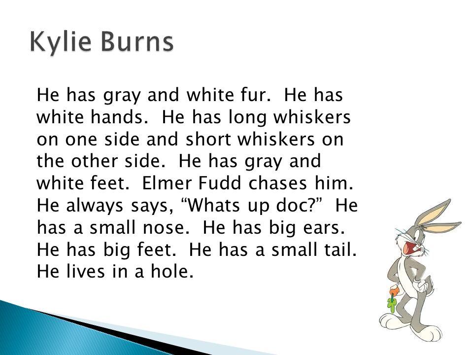 He has black dots.He has small ears. He has a black nose.