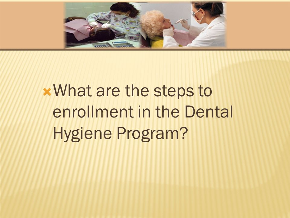 What are the steps to enrollment in the Dental Hygiene Program?