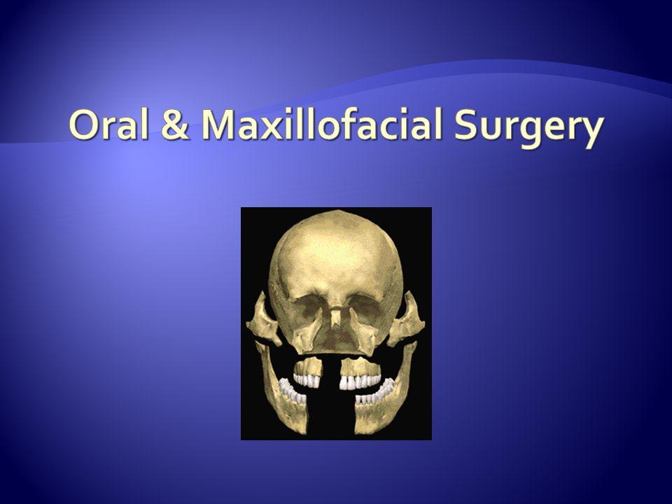 Teeth (3 regions) 2.Neck Junction of crown and root