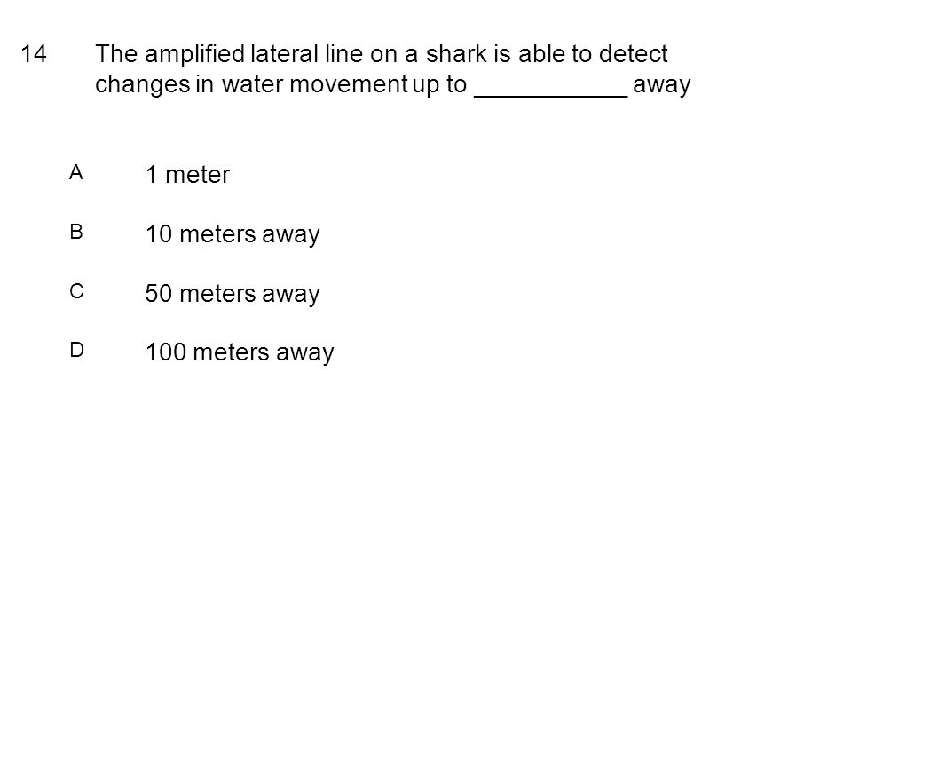 14The amplified lateral line on a shark is able to detect changes in water movement up to ___________ away A 1 meter B 10 meters away C 50 meters away D 100 meters away