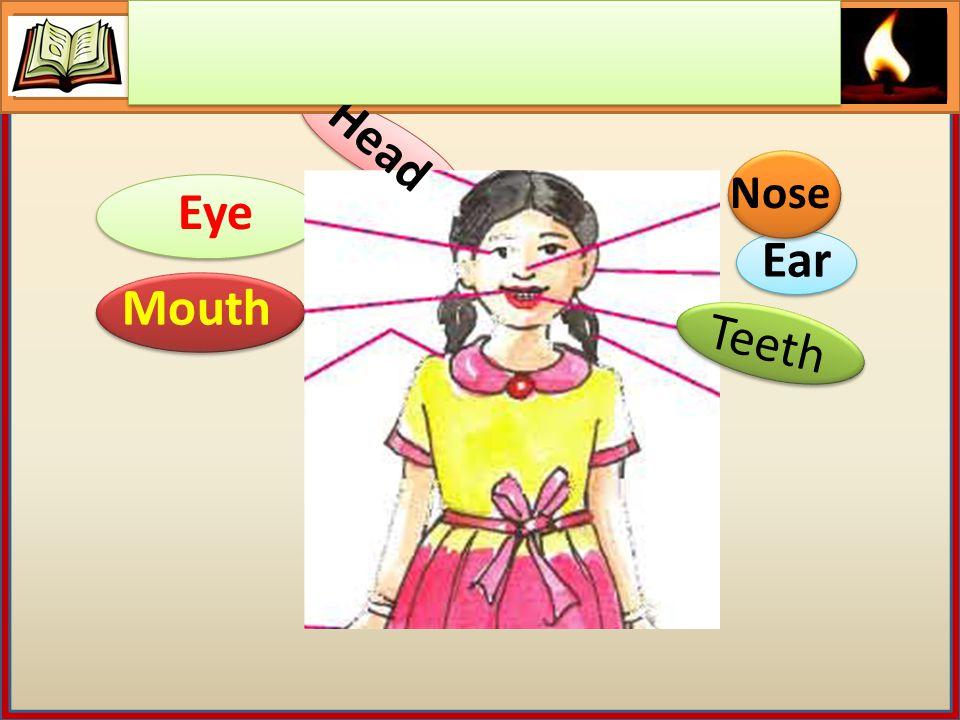 Head Eye Nose Ear Mouth Teeth