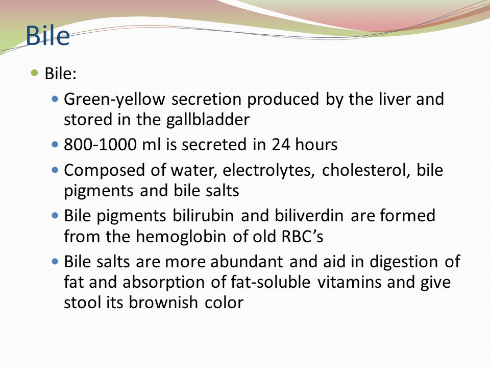 Bile Bile: Green-yellow secretion produced by the liver and stored in the gallbladder 800-1000 ml is secreted in 24 hours Composed of water, electrolytes, cholesterol, bile pigments and bile salts Bile pigments bilirubin and biliverdin are formed from the hemoglobin of old RBCs Bile salts are more abundant and aid in digestion of fat and absorption of fat-soluble vitamins and give stool its brownish color