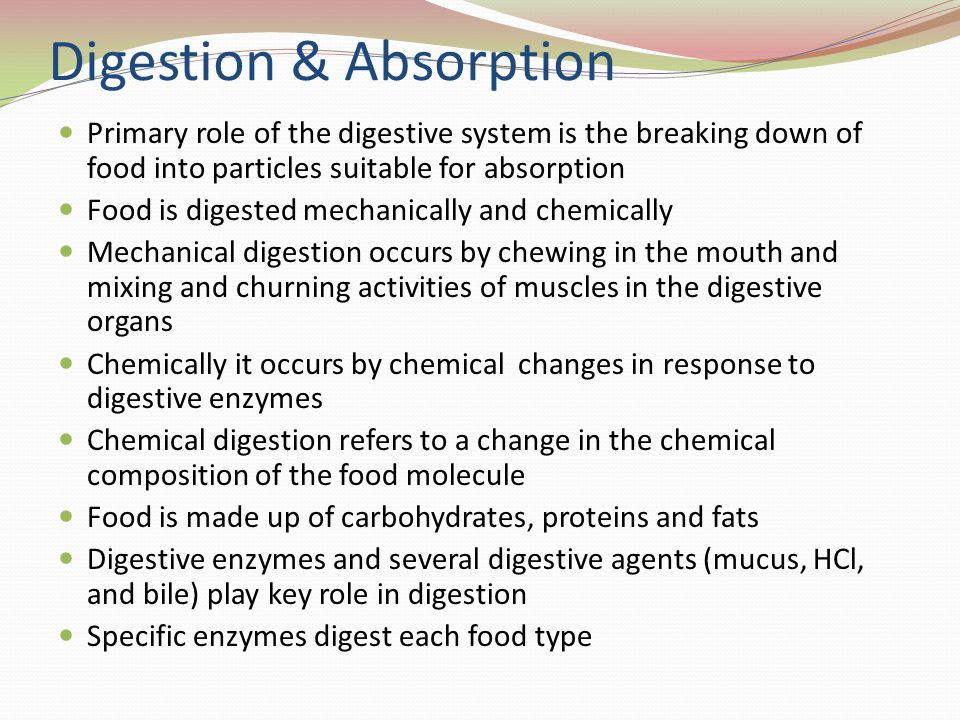 Digestion & Absorption Primary role of the digestive system is the breaking down of food into particles suitable for absorption Food is digested mechanically and chemically Mechanical digestion occurs by chewing in the mouth and mixing and churning activities of muscles in the digestive organs Chemically it occurs by chemical changes in response to digestive enzymes Chemical digestion refers to a change in the chemical composition of the food molecule Food is made up of carbohydrates, proteins and fats Digestive enzymes and several digestive agents (mucus, HCl, and bile) play key role in digestion Specific enzymes digest each food type