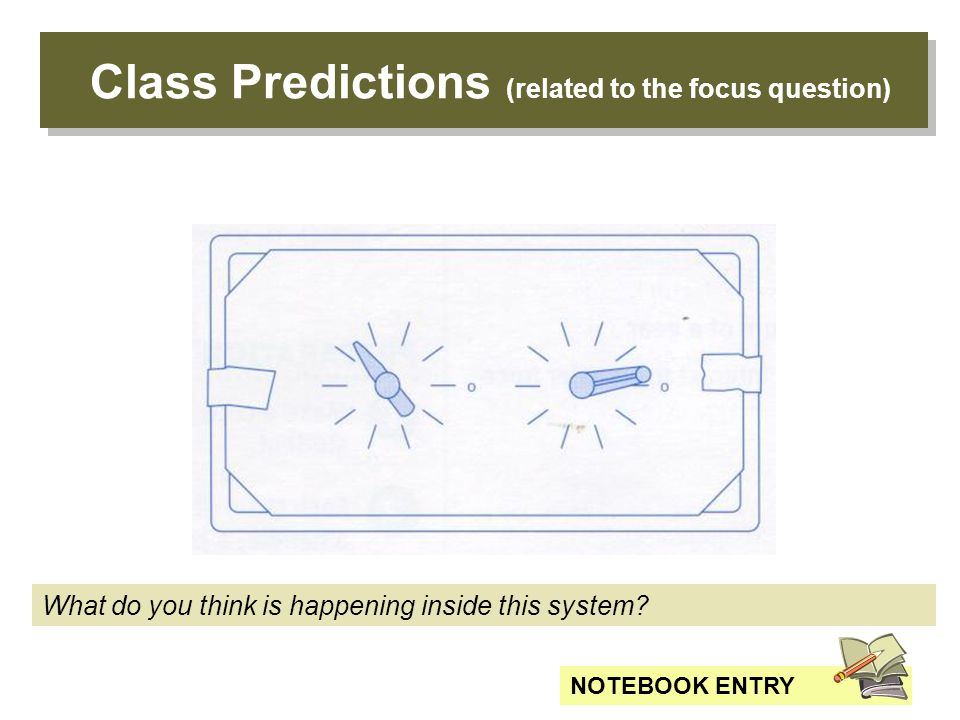 Class Predictions (related to the focus question) What do you think is happening inside this system.