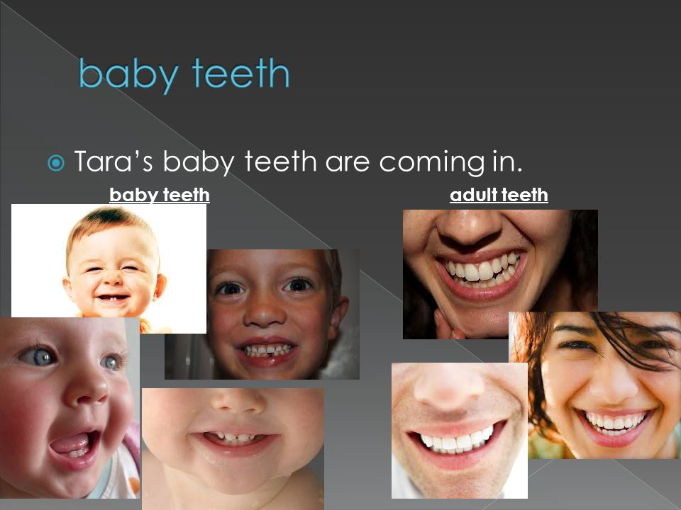 Taras baby teeth are coming in. baby teethadult teeth