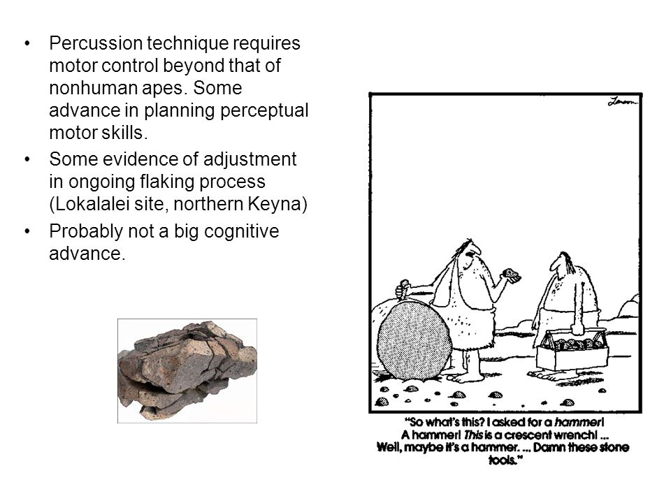 Percussion technique requires motor control beyond that of nonhuman apes. Some advance in planning perceptual motor skills. Some evidence of adjustmen