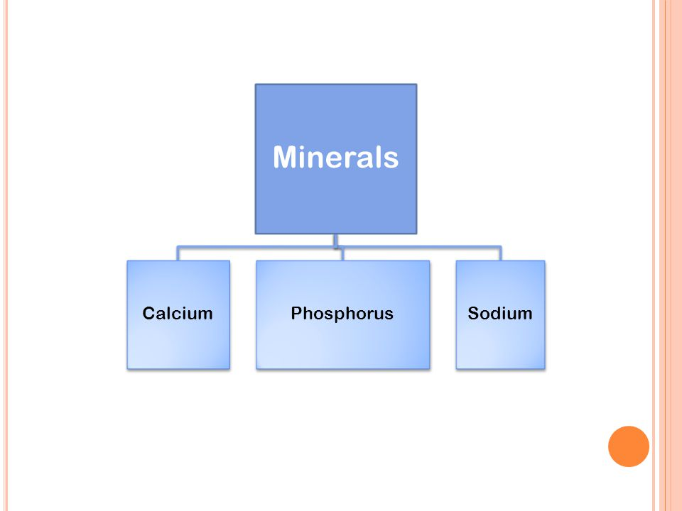 Minerals CalciumPhosphorus Sodium