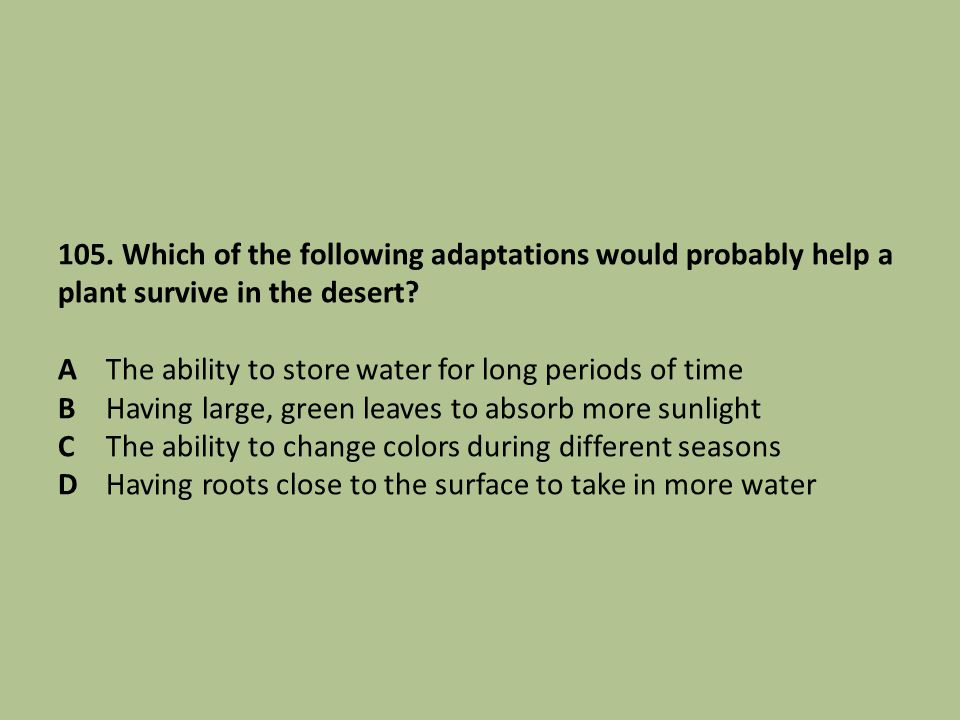 105. Which of the following adaptations would probably help a plant survive in the desert? AThe ability to store water for long periods of time BHavin