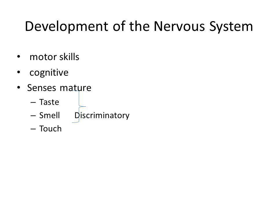 Development of the Nervous System motor skills cognitive Senses mature – Taste – Smell Discriminatory – Touch