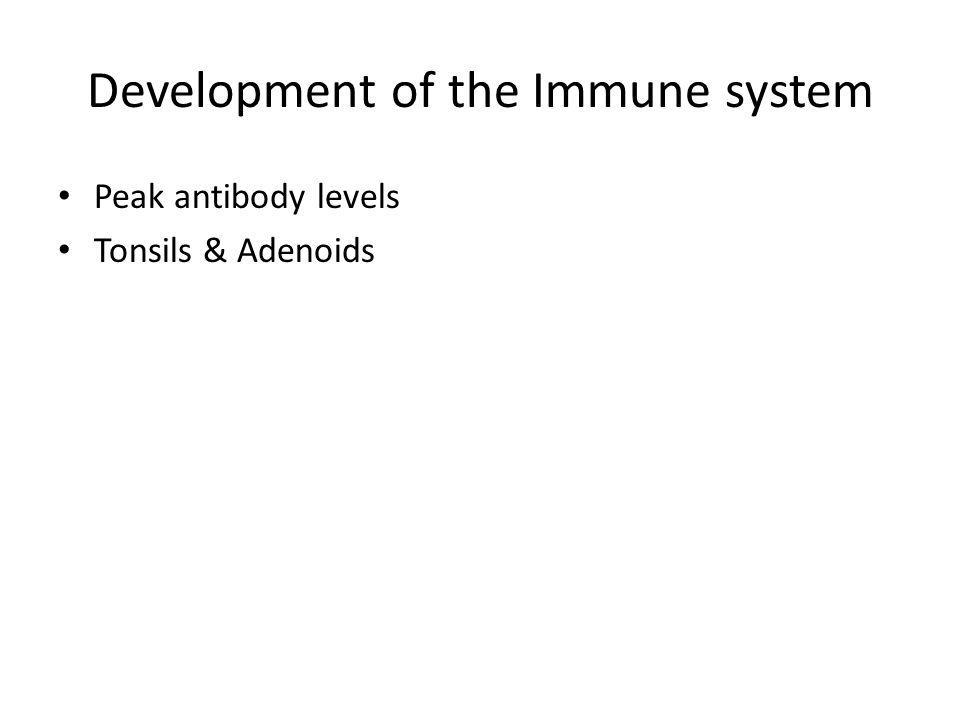 Development of the Immune system Peak antibody levels Tonsils & Adenoids