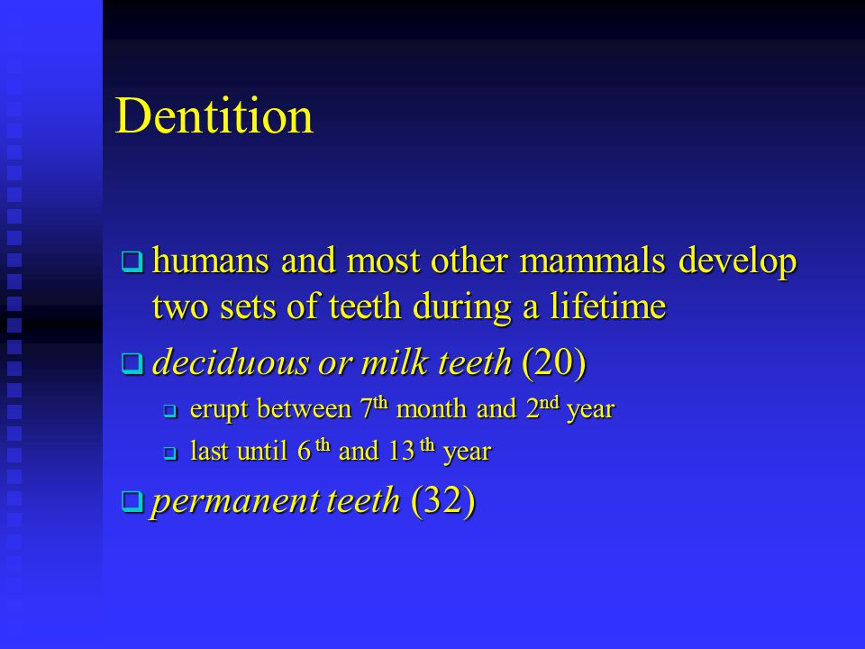 Dentition humans and most other mammals develop two sets of teeth during a lifetime humans and most other mammals develop two sets of teeth during a l