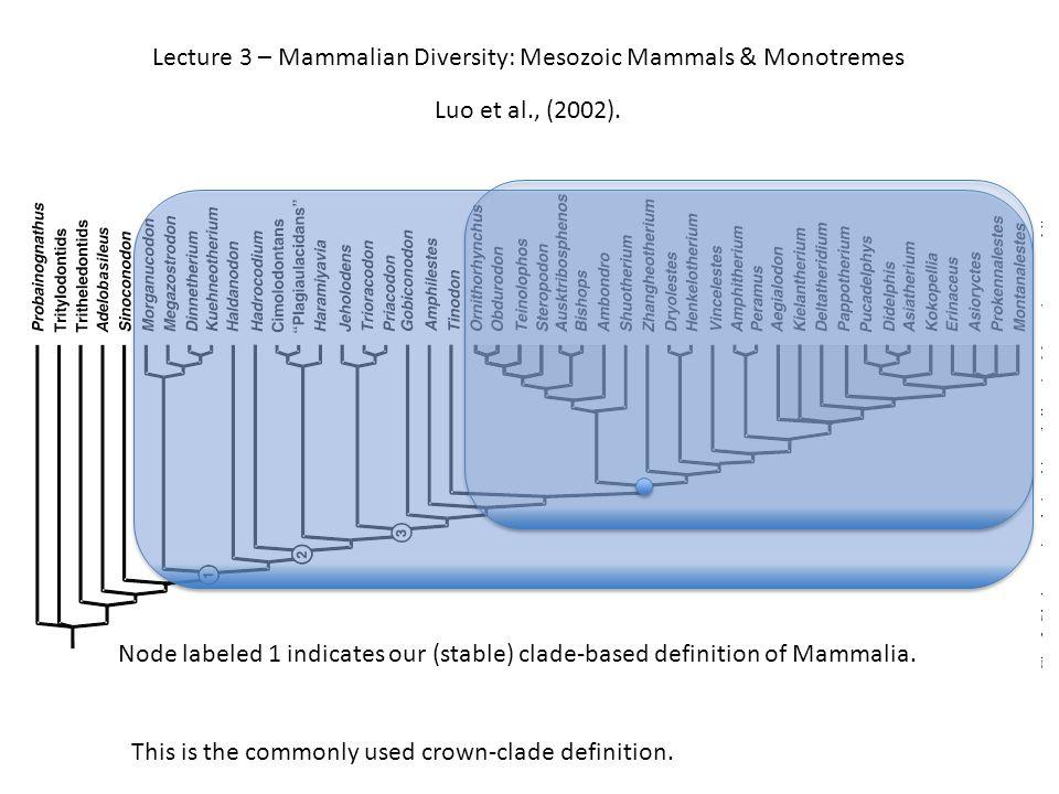 Bishops, Ausktribosphenos Mesozoic Mammals: Recent discoveries
