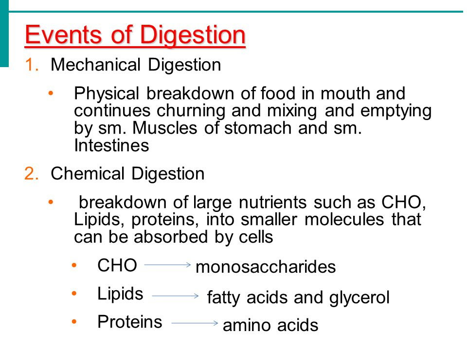 Events of Digestion 1.Mechanical Digestion Physical breakdown of food in mouth and continues churning and mixing and emptying by sm. Muscles of stomac