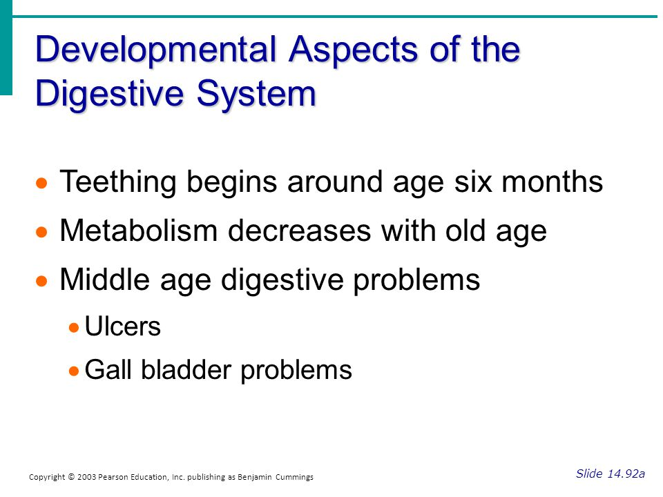 Developmental Aspects of the Digestive System Slide 14.92a Copyright © 2003 Pearson Education, Inc. publishing as Benjamin Cummings Teething begins ar
