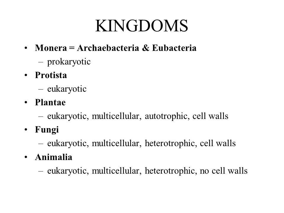KINGDOMS Monera = Archaebacteria & Eubacteria –prokaryotic Protista –eukaryotic Plantae –eukaryotic, multicellular, autotrophic, cell walls Fungi –euk