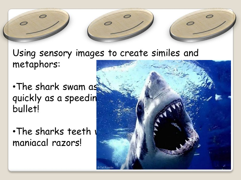 Using sensory images to create similes and metaphors: The shark swam as quickly as a speeding bullet.