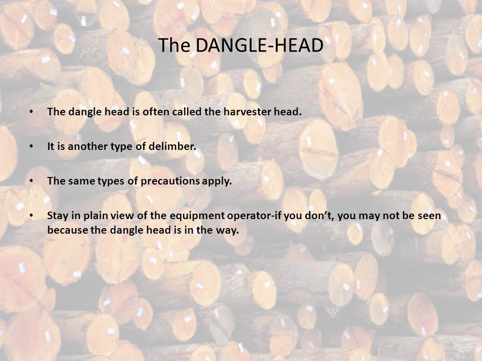 The DANGLE-HEAD The dangle head is often called the harvester head.