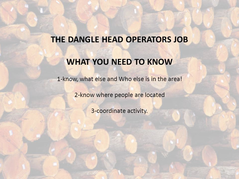 THE DANGLE HEAD OPERATORS JOB WHAT YOU NEED TO KNOW 1-know, what else and Who else is in the area.
