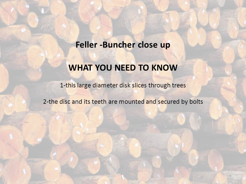 Feller -Buncher close up WHAT YOU NEED TO KNOW 1-this large diameter disk slices through trees 2-the disc and its teeth are mounted and secured by bolts