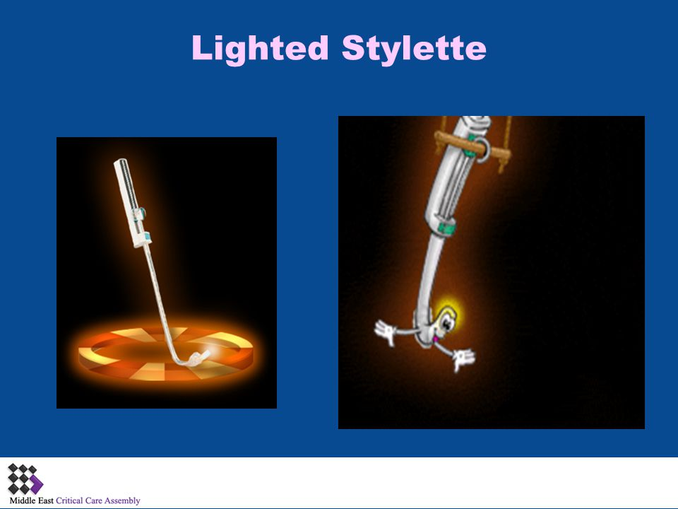 Lighted Stylette