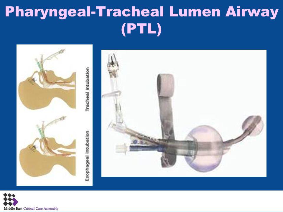 Pharyngeal-Tracheal Lumen Airway (PTL)