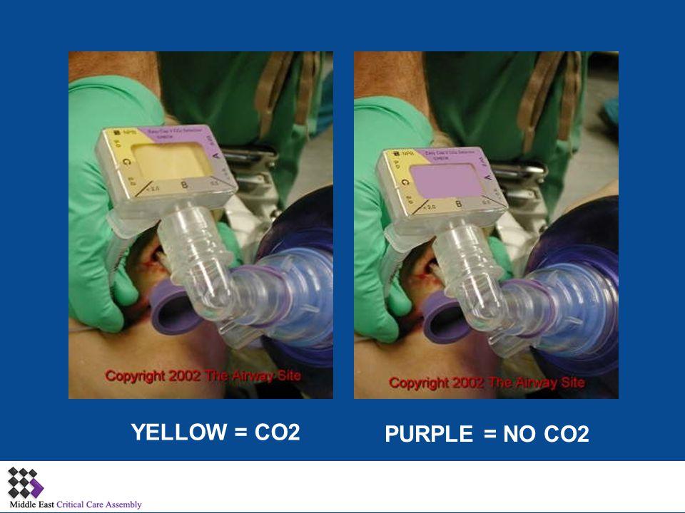 YELLOW = CO2 PURPLE = NO CO2