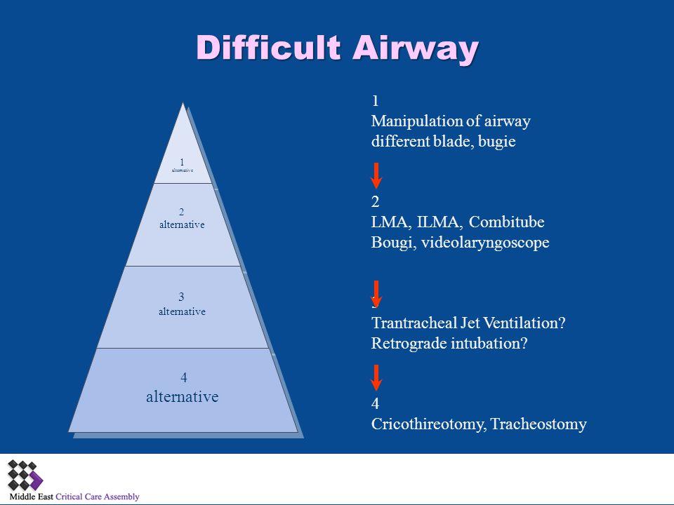1 alternative 2 alternative 3 alternative 4 alternative 1 Manipulation of airway different blade, bugie 2 LMA, ILMA, Combitube Bougi, videolaryngoscop