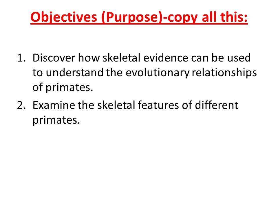 Objectives (Purpose)-copy all this: 1.Discover how skeletal evidence can be used to understand the evolutionary relationships of primates. 2.Examine t