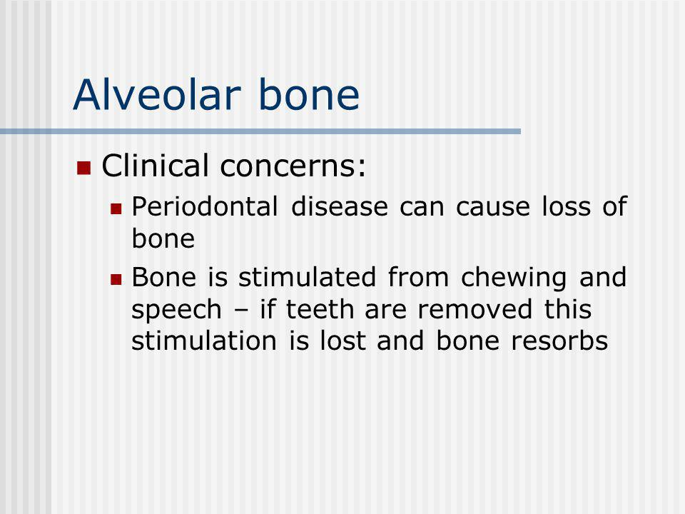 Alveolar bone Clinical concerns: Periodontal disease can cause loss of bone Bone is stimulated from chewing and speech – if teeth are removed this stimulation is lost and bone resorbs